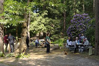 Gespräche vor und nach der Veranstaltung im idyllischen Waldgarten.